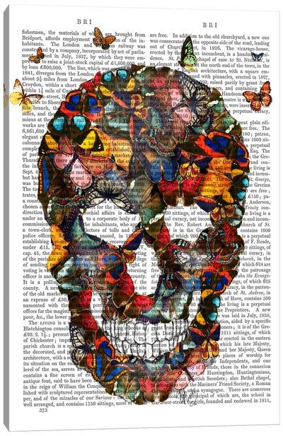 Butterfly Skull Canvas Print #FNK9