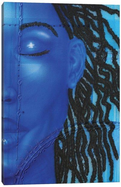 Azul Canvas Art Print