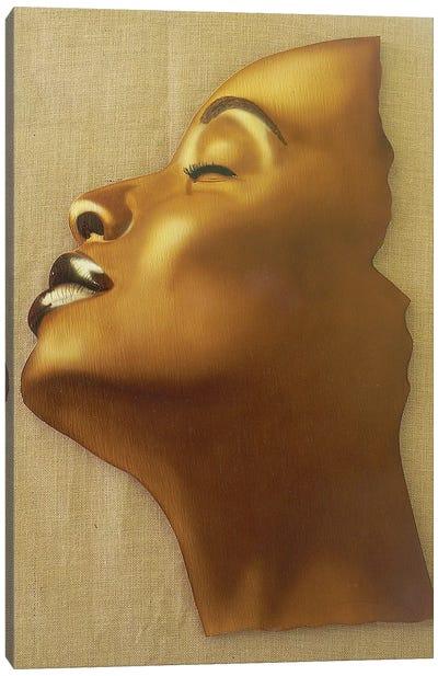 A Subtle Smile Canvas Art Print