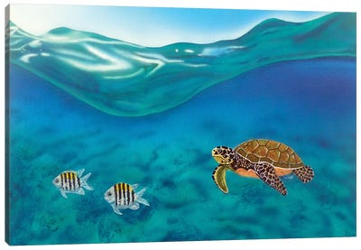 Above And Below Canvas Art Print