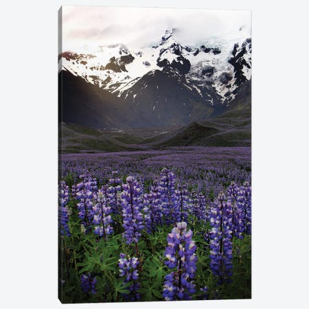 On The Road In Iceland Canvas Print #FOL13} by Florian Olbrechts Canvas Artwork