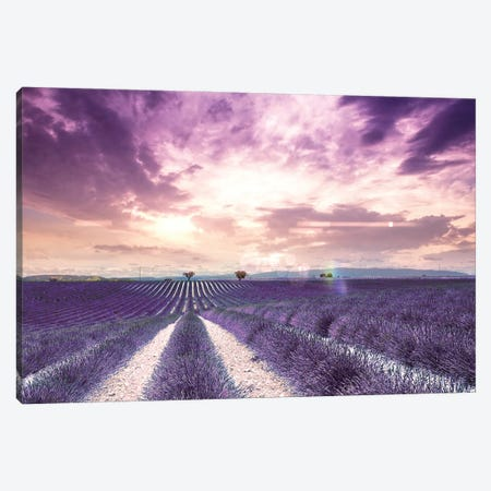 The Wonder Of Lavender Fields In South Of France, Valensole Canvas Print #FOL23} by Florian Olbrechts Art Print