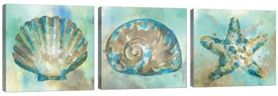 Sand Triptych Canvas Art Print