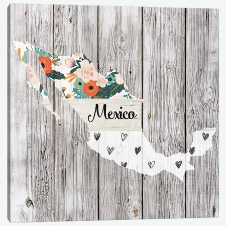 Mexico Canvas Print #FPP101} by Front Porch Pickins Canvas Wall Art