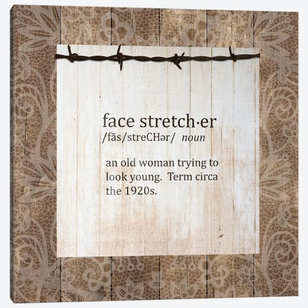 Face Stretcher Canvas Print #FPP136} by Front Porch Pickins Canvas Wall Art