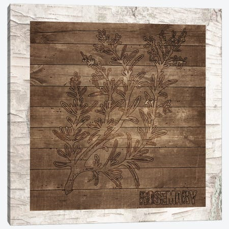 Rosemary Canvas Print #FPP23} by Front Porch Pickins Canvas Art