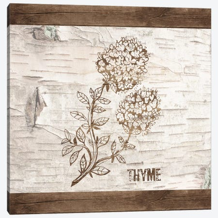 Thyme Canvas Print #FPP24} by Front Porch Pickins Canvas Print