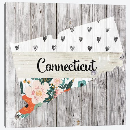 Connecticut Canvas Print #FPP86} by Front Porch Pickins Canvas Art Print