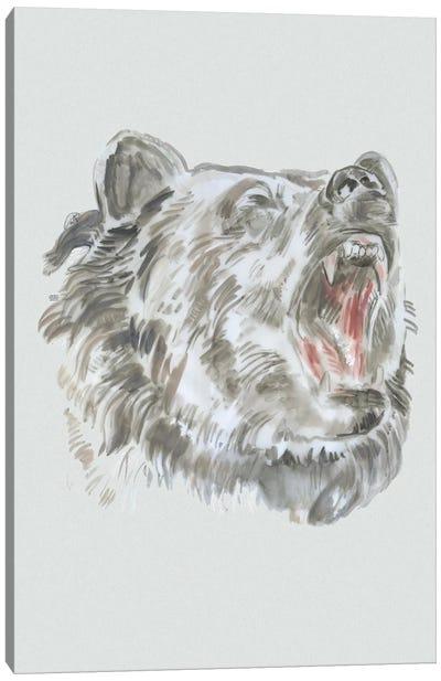 Bear Roaring II Canvas Art Print