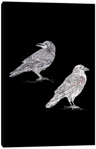 Two Crows In Black And White Canvas Art Print