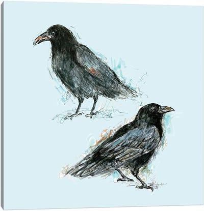 Ravens Canvas Art Print