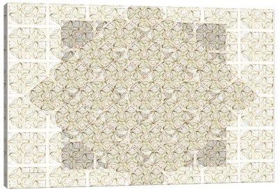 Floral Geometry Canvas Art Print