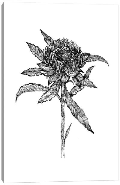 Flower Drawing Canvas Art Print