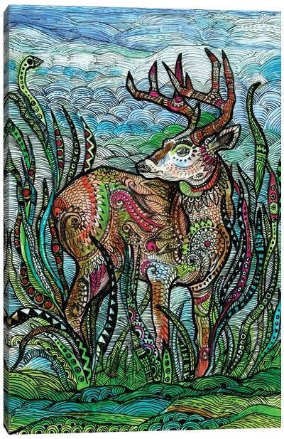 Deer In A Meadow Canvas Art Print