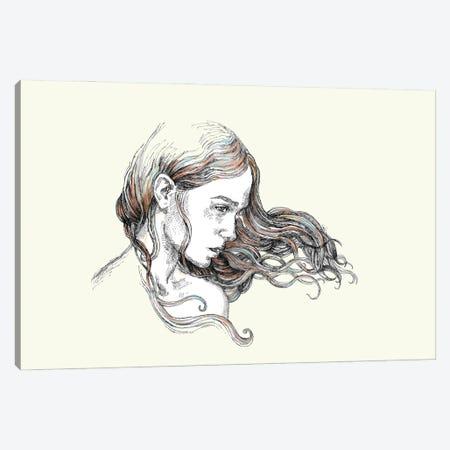 Windblown Canvas Print #FPT162} by Fanitsa Petrou Canvas Print