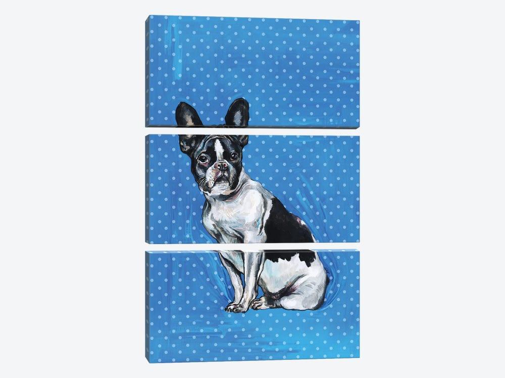 French Bulldog - Blue And White Polka Dots by Fanitsa Petrou 3-piece Canvas Artwork