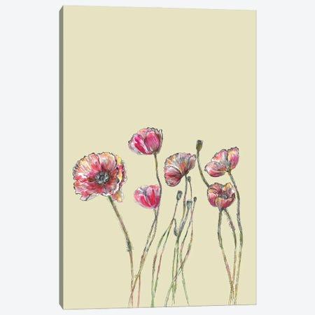 Poppy Flowers I Canvas Print #FPT60} by Fanitsa Petrou Canvas Artwork
