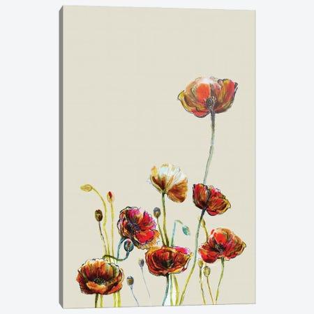 Poppy Flower II Canvas Print #FPT61} by Fanitsa Petrou Canvas Artwork