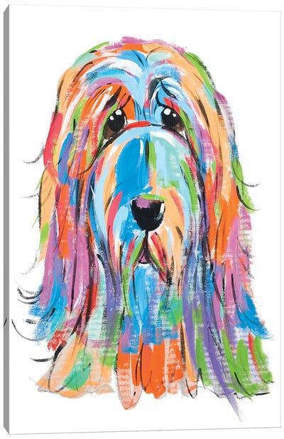 Sad Dog Canvas Art Print
