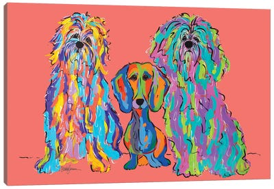 Odd Bob Canvas Art Print
