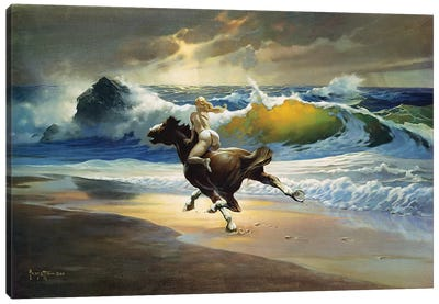 Wild Ride Canvas Art Print