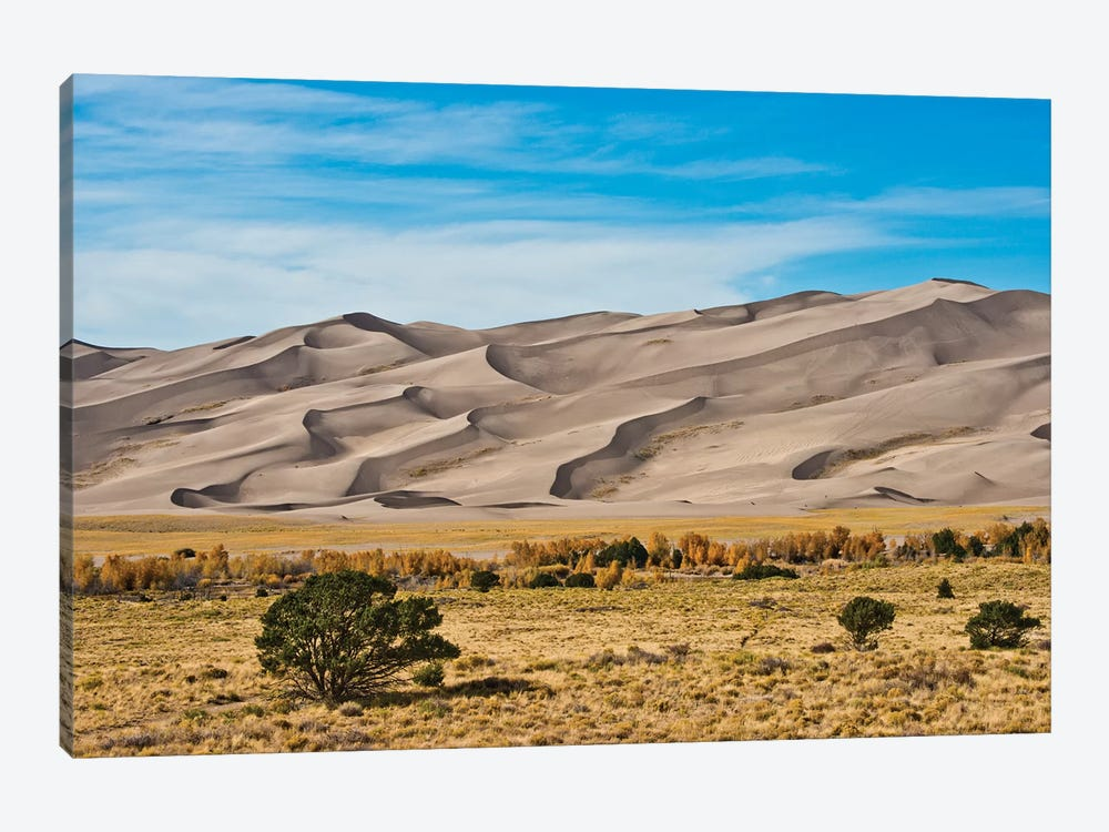 USA, Colorado, Alamosa, Great Sand Dunes National Park and Preserve I by Bernard Friel 1-piece Canvas Print