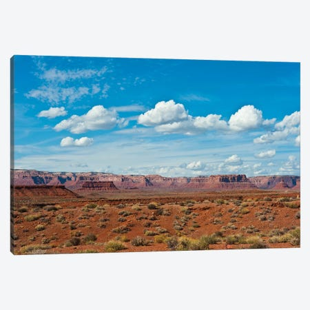 USA, Utah, Bluff, Valley of The Gods, Panorama, Bears Ears National Monument Canvas Print #FRI6} by Bernard Friel Canvas Print