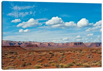 USA, Utah, Bluff, Valley of The Gods, Panorama, Bears Ears National Monument Canvas Art Print