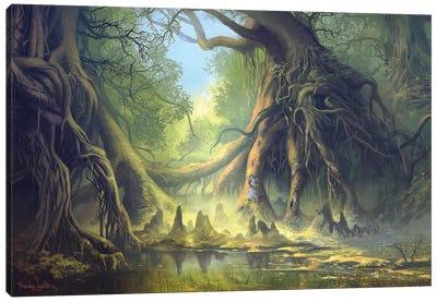 Mystical Forest Canvas Art Print