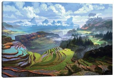 Rice Terreces Canvas Art Print
