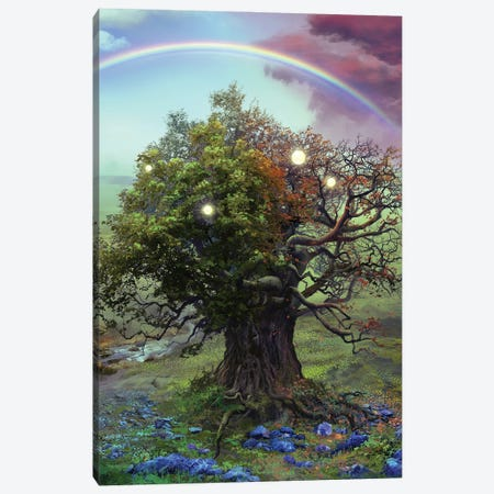 The Fate Of The Bearer Canvas Print #FRL25} by Ferdinand Ladera Canvas Artwork