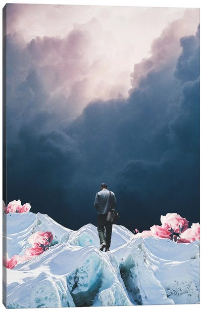 The Path to Solitude is full of Winter Roses Canvas Art Print