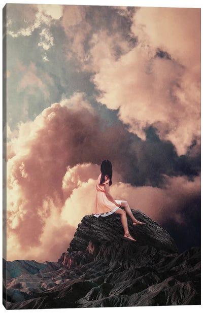 You came from the Clouds Canvas Art Print