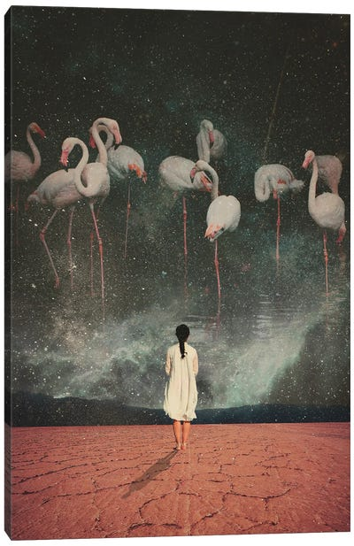 Hanging On A Dream Canvas Art Print