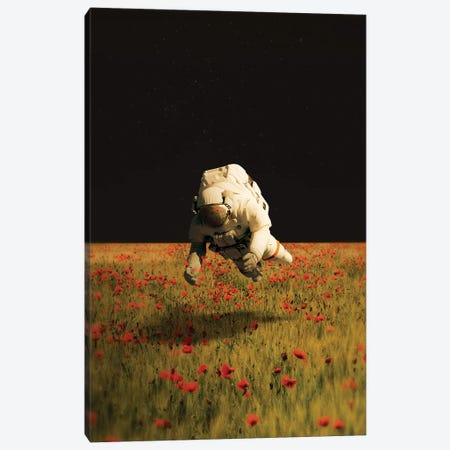 Missing Nature Canvas Print #FRO103} by Fran Rodriguez Canvas Print