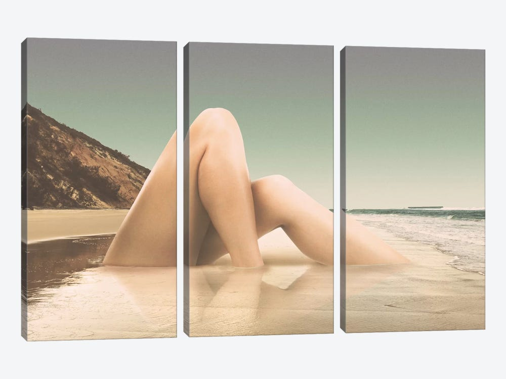 Legs II 3-piece Canvas Artwork