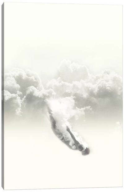Sky Diver Canvas Art Print