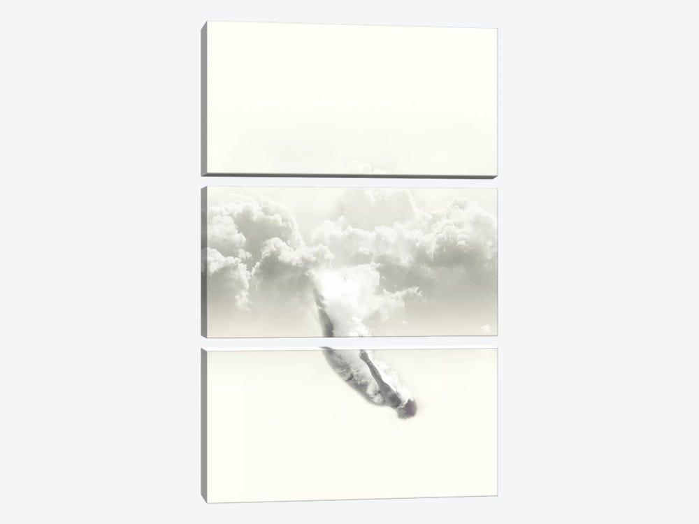 Sky Diver by Fran Rodriguez 3-piece Canvas Art Print