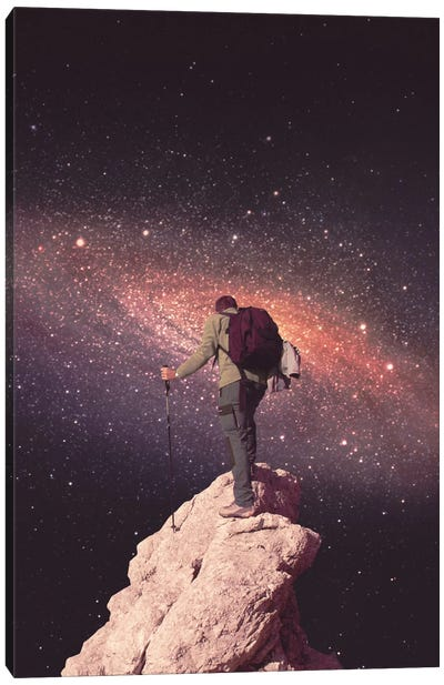 Space Tourist Canvas Art Print