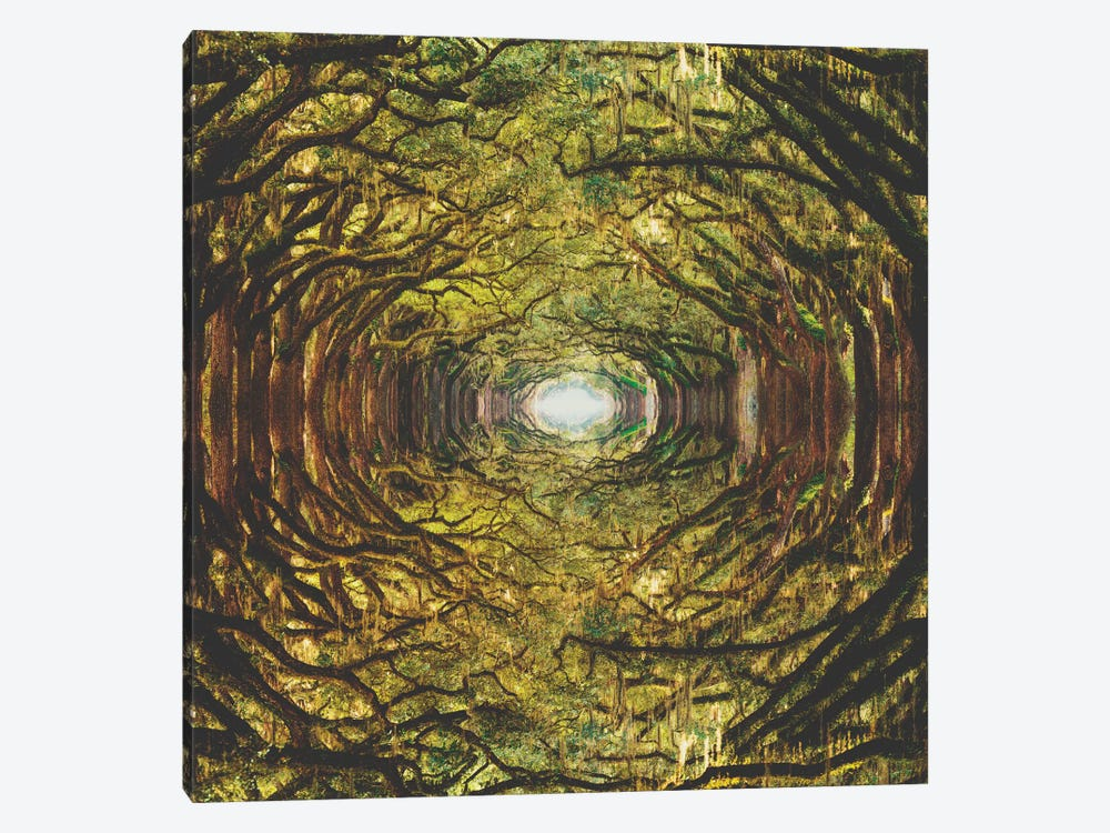 Woods I 1-piece Canvas Art