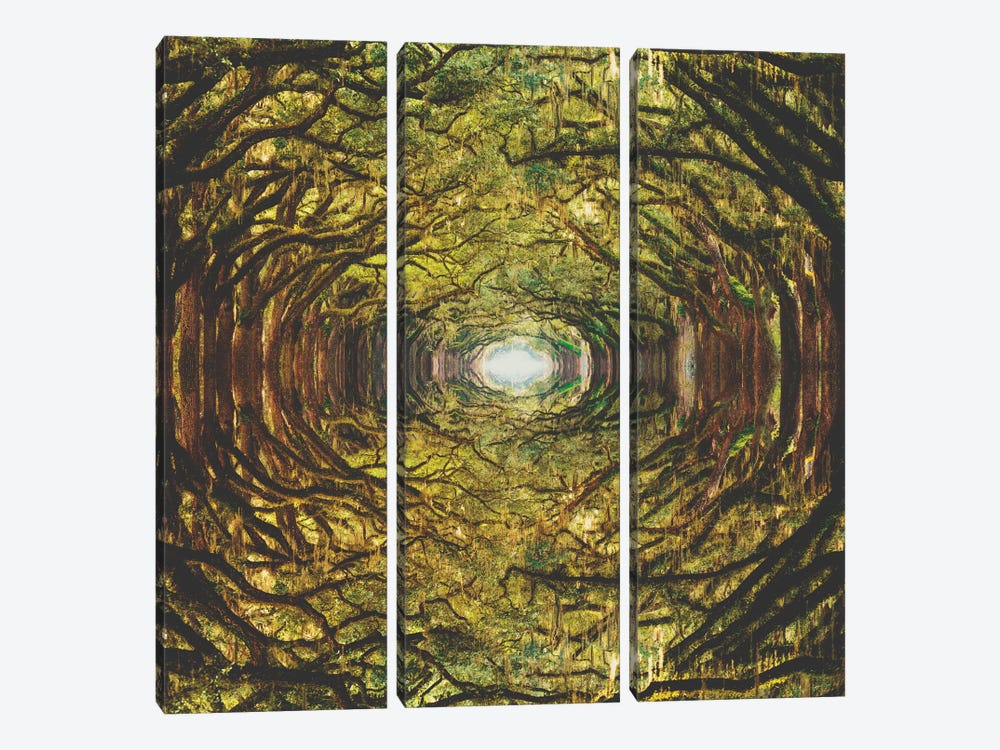 Woods I by Fran Rodriguez 3-piece Canvas Art