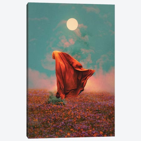 Fields Canvas Print #FRO53} by Fran Rodriguez Canvas Art Print