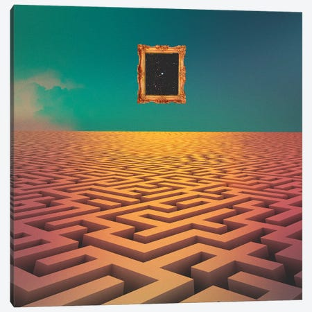 Labyrinth Canvas Print #FRO57} by Fran Rodriguez Canvas Wall Art