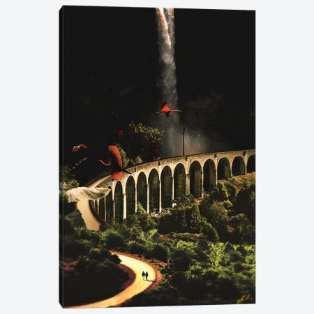 Wilderness Canvas Print #FRO73} by Fran Rodriguez Canvas Art Print
