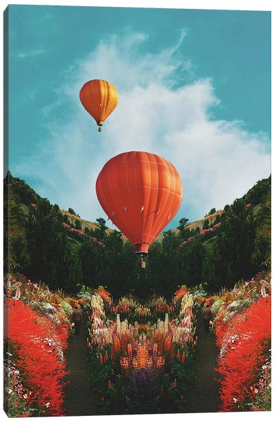 Hot Air Canvas Art Print