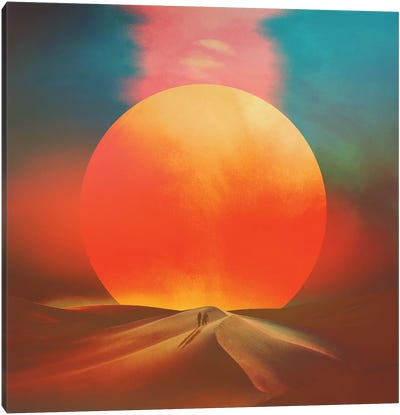Setting Sun Canvas Art Print