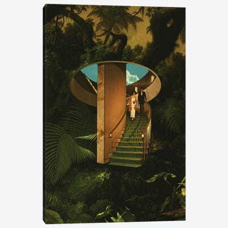 Into The Wild 3-Piece Canvas #FRO91} by Fran Rodriguez Canvas Print