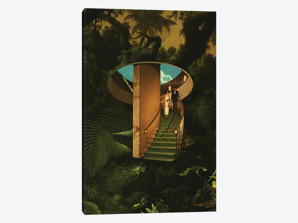Into The Wild by Fran Rodriguez 1-piece Canvas Wall Art