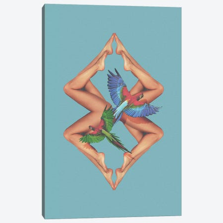 Bodies Canvas Print #FRO95} by Fran Rodriguez Canvas Art