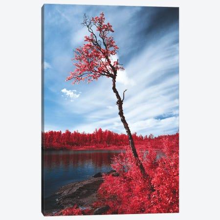 Infrared Landscape, Reine, Norway Canvas Print #FSB31} by Steffen Fossbakk Canvas Art Print